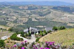 Luxuriöse Weinkellerei lizenzfreies stockbild