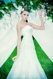 Luxuriöses Kleid Stockbild