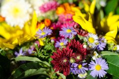 Luxuriant summer bouquet of wildflowers with poppies, daisies, cornflowers closeup. stock photography