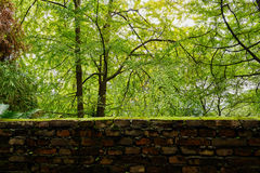 Luxuriant woods outside lichen-covered brick parapet Royalty Free Stock Photography