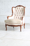 Luxurious armchair Stock Photography