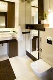 Luxurious Bathroom. The interiors design of a luxurious bathroom stock image
