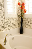 Luxurious bathroom Stock Images