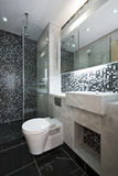 Luxurious bathroom in black and white. Modern bathroom in black and white with mosaic tiled walls and white ceramic wash basin and toilet Stock Photo