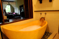 Luxurious bathtub. Closeup of luxurious, stylish bathtub in modern home Stock Photography