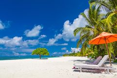 Amazing scenery, relaxing beach, tropical landscape background. Summer vacation travel holiday design. Luxury travel destination royalty free stock photos