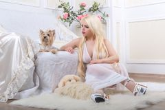 Luxurious blonde woman in a white dress with a dog  pekingese Stock Photos