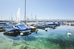 Luxurious boats and yachts anchored in Lake Geneva, Switzerland Royalty Free Stock Photography