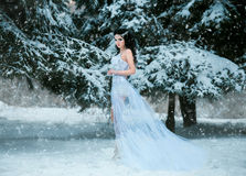 Luxurious brunette in a white dress. Standing in a snowy forest , Snow Queen, fairytale princess , a fantastic shot, a fashionable toning , creative color stock photo