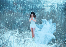 Luxurious brunette in a white dress. Standing in a snowy forest , Snow Queen, fairytale princess ,a fantastic shot,a fashionable toning , creative color stock photography
