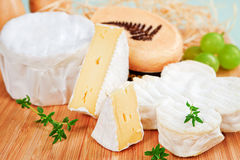 Luxurious cheese still life. Luxurious cheese variation arranged on wooden board with fresh herbs and grapes stock photo