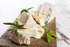 Luxurious cheese variation Stock Image