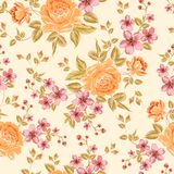 Luxurious color peony pattern. Stock Photos