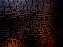 Luxurious dark brown gold snake leather texture. Fashionable and expensive material for the manufacture of stylish clothes and acc Royalty Free Stock Image