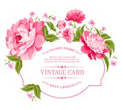 Luxurious invitation card. Stock Images