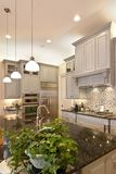 Luxurious kitchen. With granite and glass, vertical shot stock photography