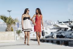 Luxurious life for two women royalty free stock photography