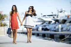 Luxurious life for two women royalty free stock images