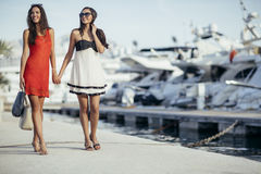 Luxurious life for two women Stock Images