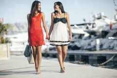 Luxurious life for two women Royalty Free Stock Image