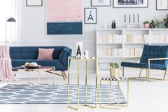 Luxurious living room interior royalty free stock photo