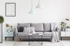 Luxurious living room interior with a grey couch, lamps, coffee royalty free stock images