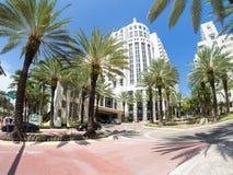 The luxurious Loews Miami Beach Hotel and it tropical palms gard Stock Photos