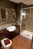Luxurious modern bathroom. Interior details of luxurious modern bathroom with toilet, wash basin and shower cubicle Stock Photo