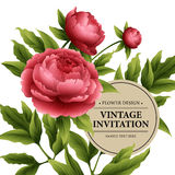 Luxurious  peony flower and leaves greeting card Stock Photos