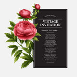 Luxurious  peony flower and leaves greeting card Royalty Free Stock Image