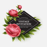 Luxurious  peony flower and leaves greeting card Royalty Free Stock Photography