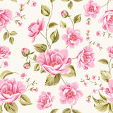 Luxurious peony pattern Stock Photography