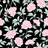 Luxurious peony wallapaper. Stock Images