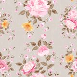 Luxurious peony wallapaper. Royalty Free Stock Images