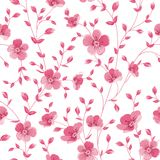 Luxurious peony wallapaper. Royalty Free Stock Photography