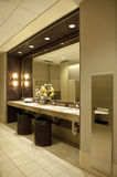 Luxurious public bathroom. Interior details of mirror and flowers in luxurious modern washroom or public toilet Stock Photography