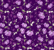 Luxurious purple violet  Watercolor  abstract rose flower art seamless wallpaper background. Long stem pink red roses elegant impressionist painting with purple Royalty Free Stock Photo