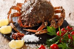 Luxurious Raw spider crab surrounded by fresh tomatoes, lemon, h. Erbs and spices close-up on a black stone. horizontal royalty free stock images