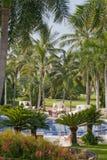 Luxurious resort pool Stock Photos