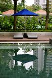 Luxurious resort swimming pool setting stock images