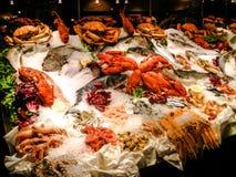 Luxurious seafood display Stock Image