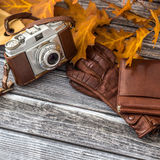 Luxurious set of leather gloves, wallet and retro camera Stock Image