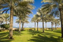 Luxurious Spa Garden Stock Photo