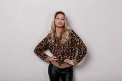 Luxurious stylish young woman with blond curly hair in a trendy leopard sweater in stylish black pants posing in a room. On a white background. Glamor girl royalty free stock photos