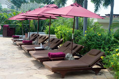 Luxurious sun loungers and parasols Stock Photo