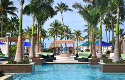 Luxurious swimming pool. With palm trees Stock Photography