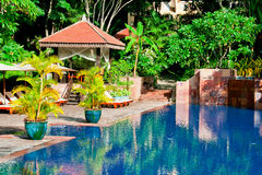 Luxurious Swimming Pool. A luxury swimming pool at a tropical resort Royalty Free Stock Photography