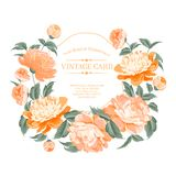 Luxurious vintage frame. Royalty Free Stock Images