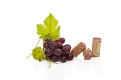 Luxurious wine still life. Stock Photos