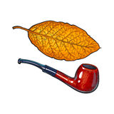 Luxurious wooden tobacco smoking pipe, sketch vector illustration Royalty Free Stock Photography